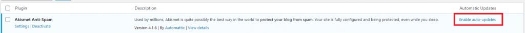 WordPress Plugin enable auto-update