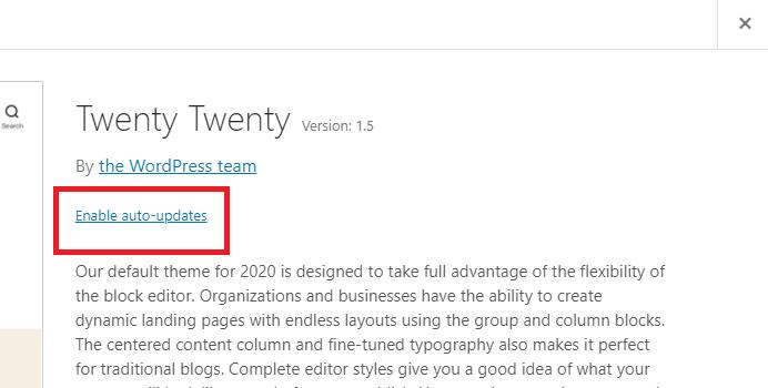 WordPress Theme Auto-updates